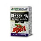 BERBERINA DEL AGRACEJO INDIO (Barberis aristata)